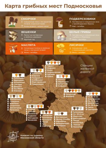 Региональный комитет Московской области по туризму опубликовал на карте лучшие грибные места региона