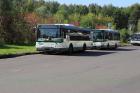 Расписание автобуса №5 в Электростали «Магазин Турист – Юбилейный водоём»