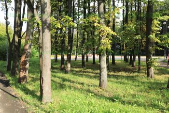 Сквер вокруг мемориала «Катюша»