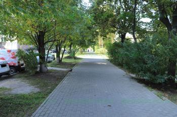 Улица Ялагина